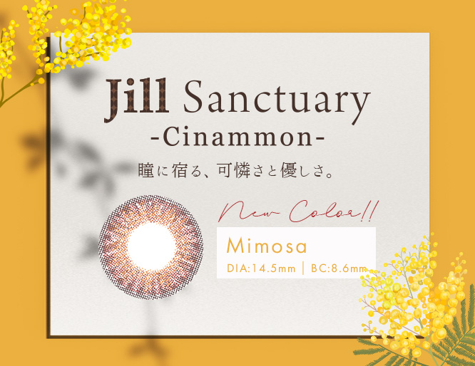 Jill Sanctuary Cinammon Mimosa ブラウン