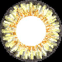 レヴィ 度ありでヘーゼルのLusterの拡大画像です。